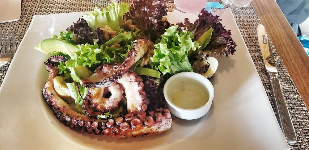 A large salad on a white plate with octopus tentacles